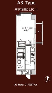 A3 Type